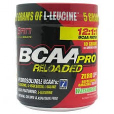 SAN BCAA-PRO Realoded (456 г)