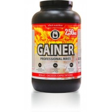 aTech Nut. PROFESSIONAL MASS Gainer (2,5 кг)