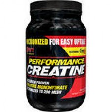 SAN Performance Creatine (1200 г.)(03/18)